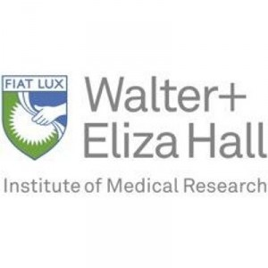 Walter and Eliza Hall Institute Enroll Patients on Potential Cure for Hepatitis B Trial