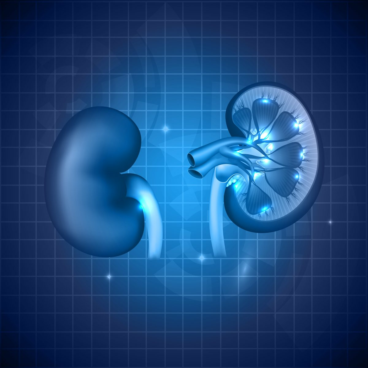Better Kidney Transplant Outcomes Found Among HIV Patients in Comparison to Hepatitis C Patients